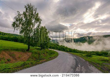 road through hillside on foggy morning. beautiful countryside landscape of Carpathian region