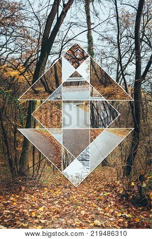 Image of forest in autumn and the sacred geometry symbol, collage