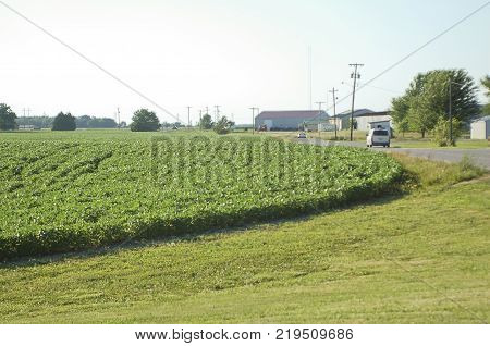 Small Town in Midwest America with Soybean Field, Buildings, and Van Driving down a Highway