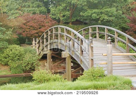 Peaceful Japanese Wooden Bridge with Trees at the Saint Louis Botanical Garden