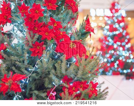 Beautifully decorated and illuminated Christmas tree against shiny illuminated soft focused background. Christmas and New Year concept.