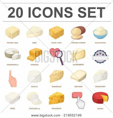 Different kind of cheese cartoon icons in set collection for design.Milk product cheese vector symbol stock  illustration.