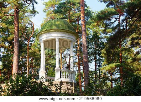 Arbour (rotunda) among the pine forest of Jurmala. Latvia