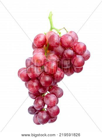 red grapes isolated on white background.Picture of grape vine floating on white