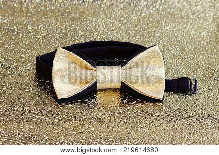 A festive golden with a black bow tie on a gold background