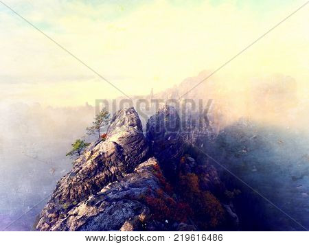 Magnificent heavy mist in landscape. Autumn creamy fog in landscape. Hill increased from thick fog.