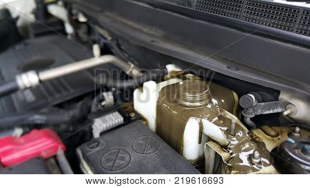 Engine Oil Mix with Oil Cooling Water Car Problems