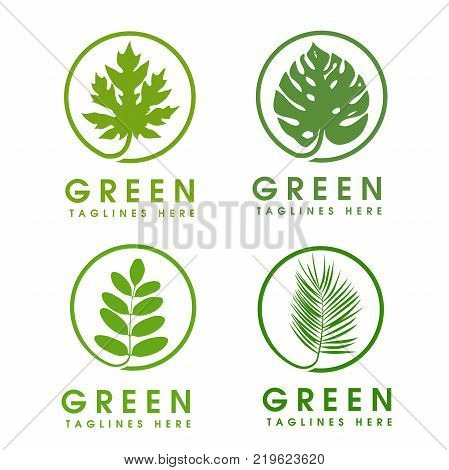 green leaf ecology nature element vector logo. Design shape leaf logo and abstract organic leaf logo. Leaf logo Eco graphic creative template. nature health green logo vector