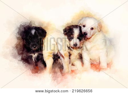 Beautiful adorable group of shepherd dog puppies and softly blurred watercolor background