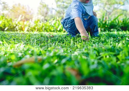Cute little Asian 1 year old toddler baby boy child playing with leaves Baby touching everything and Kid discovering concept / Soft and Selective focus