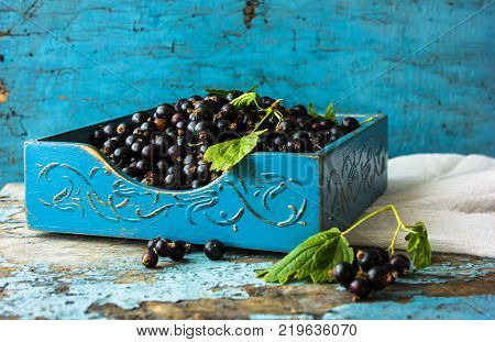 Fresh berries of  currant in blue wooden bowl on wooden background. Ribes aureum known by the common names golden currant clove currant pruterberry and buffalo currant. Selective focus.