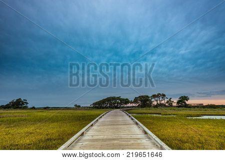 Wooden Boardwalk Through Marsh along North Carolina's intercoatal waterway