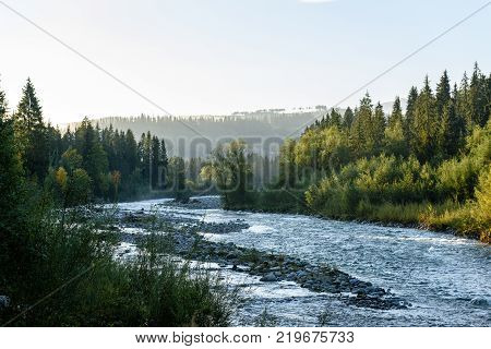 Mountain River In Summer. Slovensky Raj. Sucha Bela Trail
