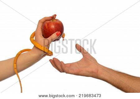 Metaphorical image of the symbolism of Adam and Eve