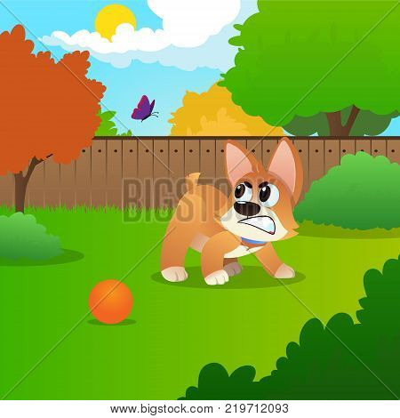 little corgi standing on green meadow and growling at flying butterfly cartoon dog playing in