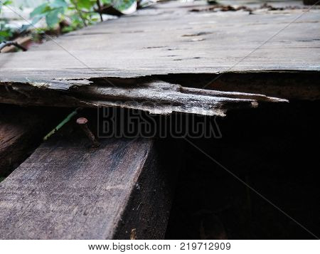 old pine crack look the nail on the garden bench