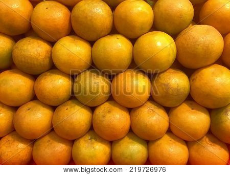 Pile of Fresh Round Oranges Neatly Arranged