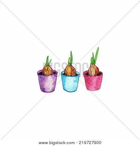 watercolor seedlings doodle set, hand drawn isolated design horticulture elements