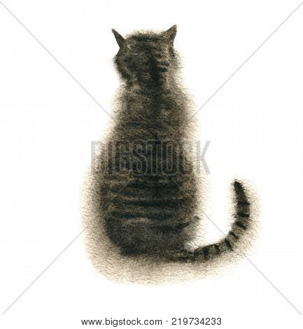 watercolor drawing sitting tabby cat isoated at white background