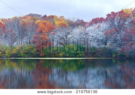 autumn colors on trees and frosty landscape of marthaler park and pond with reflections on water in west saint paul minnesota