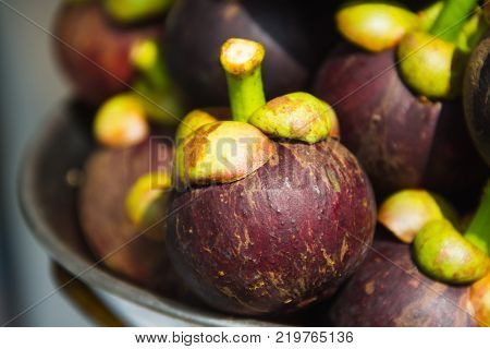 Closeup mangosteen on the scales and blurry mangosteen background