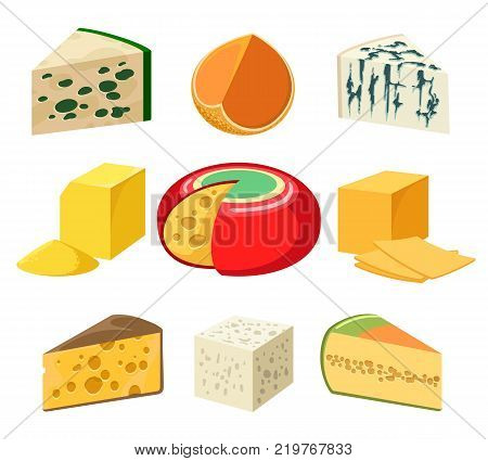 Cheese. cheeses types and slices delicatessen groceries isolated on white, gouda and feta, parmigiano and cheddar, gorgonzola and roquefort, vector illustration