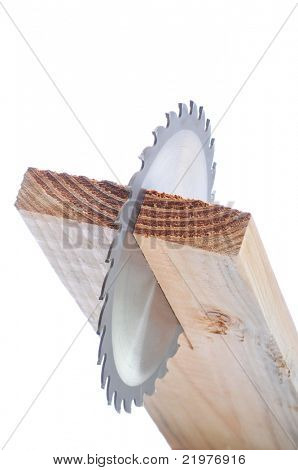 Circular Saw Blade in Board end view isolated over white with shallow depth of field