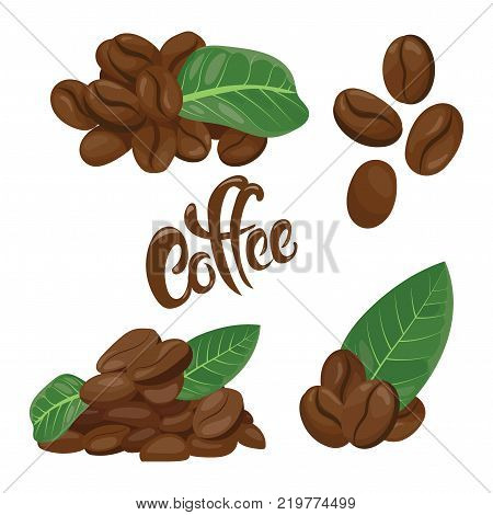 Set of coffee beans. A collection of coffee beans in different variations. Logo for the coffee house. Vector illustration.