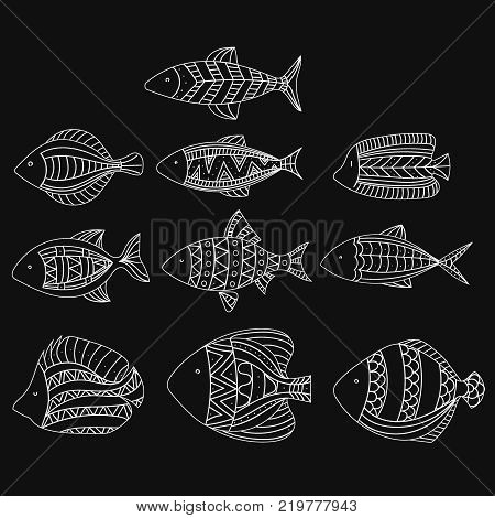 Set of vector stylized fishes. Collection of aquarium fish. Illustration for children.