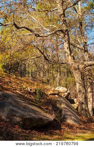 Autumn landscape with the boulders and thicket in sunny day