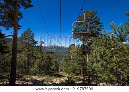 Chairlift Through Pine Forest Horizontal