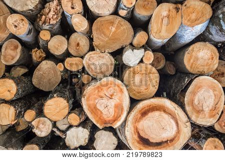 Close Up of firewood, wooden background, closeup of chopped firewood. Firewood stacked and prepared for winter. Pile of wood logs
