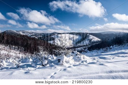 winter ountain scenery with snow covered hills and blue sky with clouds from Wielki Przyslop (Velky Prislop) hill in Zywiec Beskids (Kysucke Beskydy) mountains near Wielka Racza (Velka Raca) hill on slovakian - polish borders
