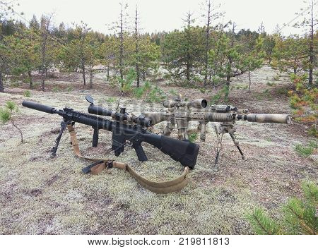 Assault rifles on the background of pine forests and sand. One of the rifles painted in desert color.