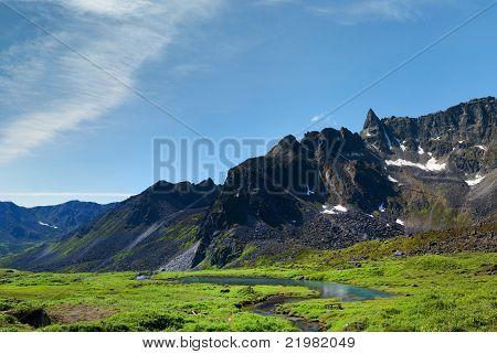 Beaver Dam In Archangel Valley, Hatcher Pass, Alaska