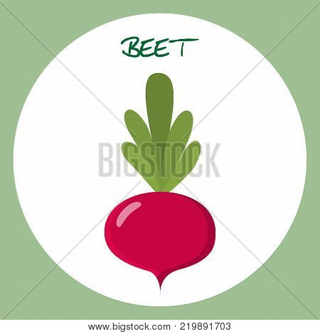 Beet flat icon food natural illustration organic logo vector