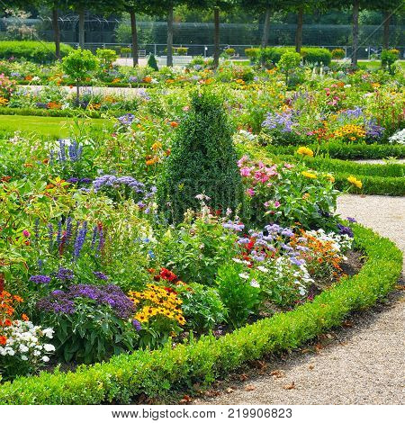 Lush flower beds in the summer garden. A bright sunny day.