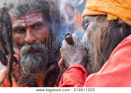 BABUGHAT KOLKATA WEST BENGAL / INDIA - 10TH JANUARY 2015 : Hindu Sadhu smoking marijuana while another Sadhu looking at him locally called Ganja a form of canabis sativa .