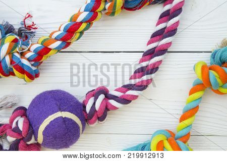 Pet care, veterinary, grooming concept. Pets having fun.Colorful rope bones dog toys on a white wooden background. Space for your text or image.