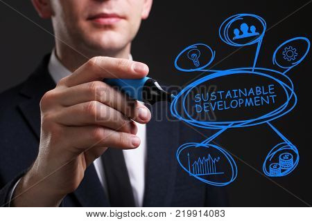Business, Technology, Internet And Network Concept. Young Business Man Writing Word: Sustainable Dev
