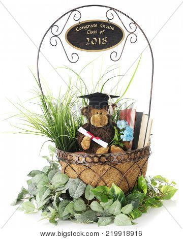 A graduating monkey in a basket of books and greenery with