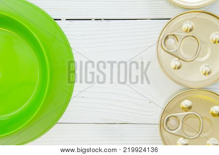 Pet care, pet food concept. Feeding your pet friend. White wooden background with a frame of an empty green plastic bowl and two tin cans of pet food , close up. Space for your text or image.