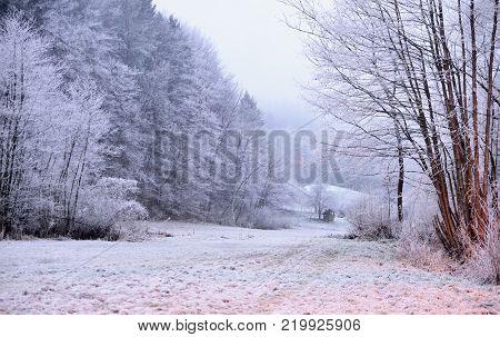 Winter scene in Tuhinj valley in Slovenia