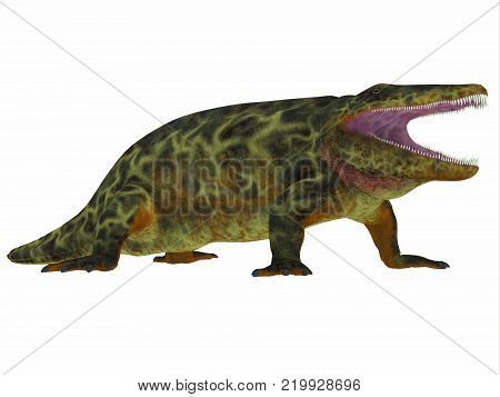 Eryops Dinosaur Side Profile 3D illustration - Eryops was an semi-aquatic ambush predator much like the modern crocodile and lived in Texas, New Mexico and the Eastern USA in the Permian Period. poster