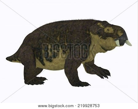 Placerias Dinosaur Side Profile 3D illustration - Placerias was a herbivorous dicynodont dinosaur that lived in Arizona, USA in the Triassic Period.