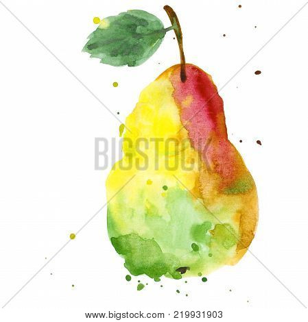 Exotic pear healthy food in a watercolor style isolated. Full name of the fruit: pear. Aquarelle wild fruit for background, texture, wrapper pattern or menu.