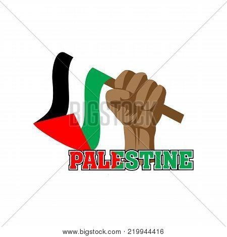 image holding the Palestinian flag, raising independence