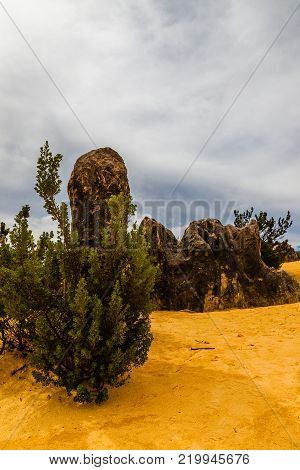Landscape View Of The Limestone Pinnacles In The Pinnacles National Park, Cervantes, Western Austral