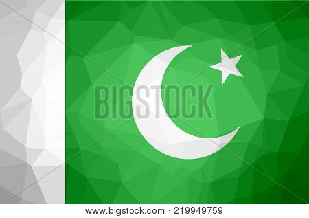 Pakistan Polygon Texture Flag. Vector and Illustration