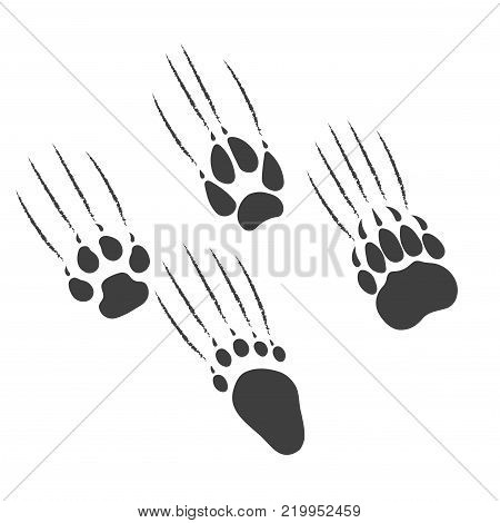 On the image presented Paw of a predator scratches a background.